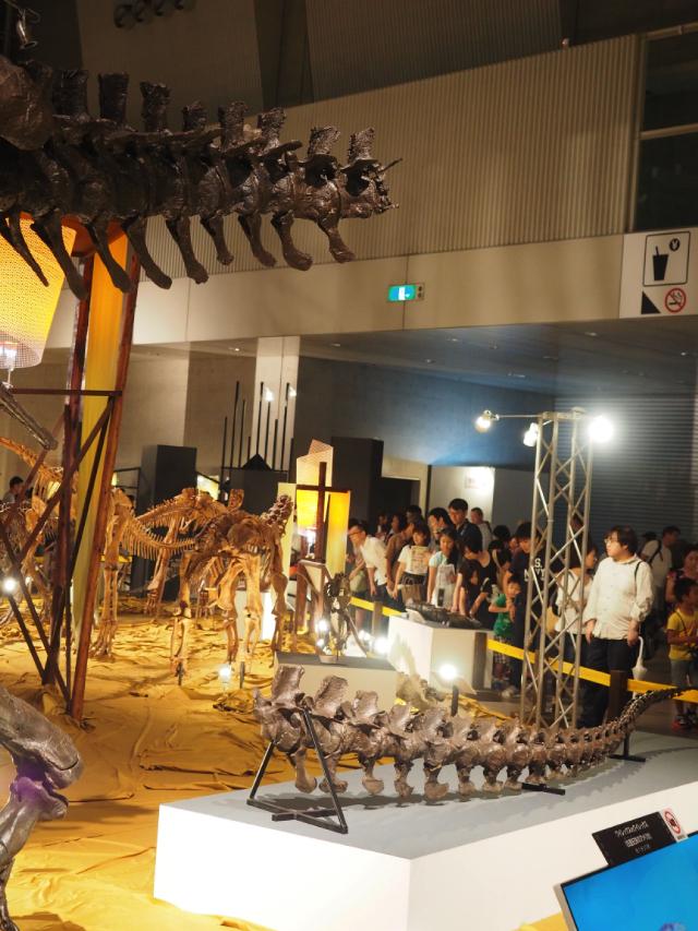 10_ティラノサウルス尾部.jpg