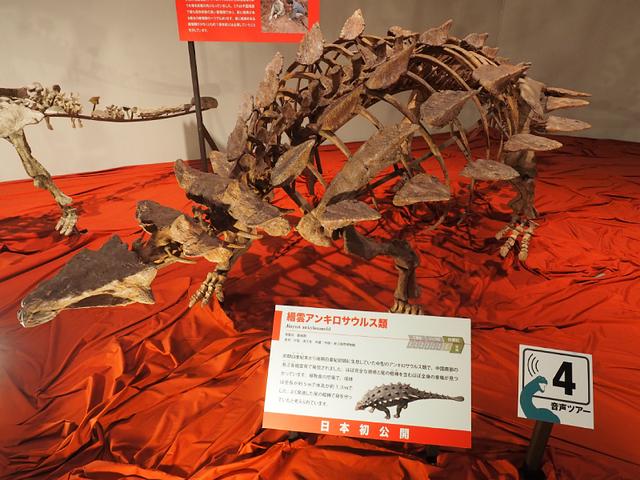 6_アンキロサウルス.jpg